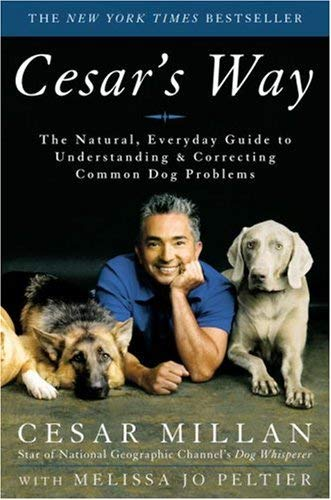 Image for Cesar's Way: The Natural, Everyday Guide to Understanding and Correcting Common Dog Problems