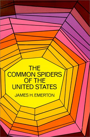 Image for The Common Spiders of the United States