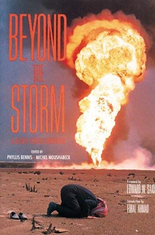 Image for Beyond the Storm: A Gulf Crisis Reader